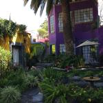 The Gardens of Casa Carly