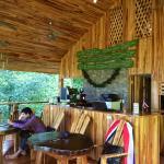 Detalles de madera, jardín tropical y un café rico...