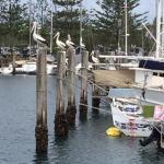 Brunswick-Byron Fishermen's Co-op