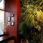 Photo of Tea & Coffee Garden
