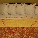 Rose petals laid out for proposal