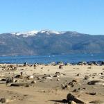Lovely Lake Tahoe & Beach