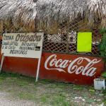 Los Chayoteros de Orizaba Foto