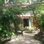 jardín y comedor