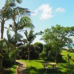 Blick von der vorderen Veranda in den Garten
