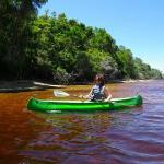 Enjoy a relaxing canoe trip in a nature reserve with abundant bird life