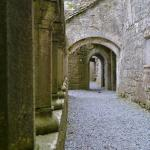 Inside Ross Errily Friary
