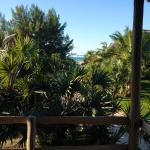 View from our patio to the beach entrance. Such gorgeous weather we had