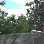 En la cascada de la pileta contemplando las sierras