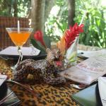 Tenemos un hermoso lugar para hacer de su visita a Palenque una experiencia gastronómica
