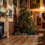 Great Hall Christmas tree 2014