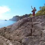 скалы с голубыми крабами