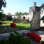 Photo of Bio Masseria Santa Lucia