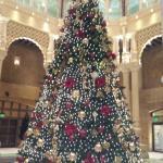 Their beautiful Christmas tree