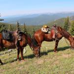 Foto de Tumbling River Ranch