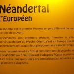 Exposition l'homme de Néandertal