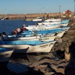 pangas @ the marina