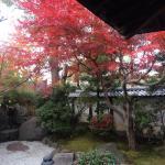 Kyoto Garden Ryokan Yachiyo Foto