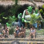Shrek Pool