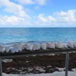View from Barracuda Beach Bar