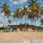 Beachfront Bougainvillea