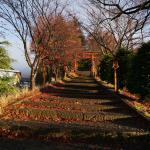 Walking path to the pagoda