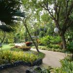 Four Seasons Chiang Mai property is spectacular
