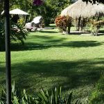 Los jardines muy bonitos para relajación.
