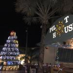 Lobster trap Christmas tree!