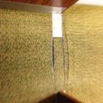 Threadbare carpet in the hallway in need of replacing.