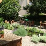 Die Gartenoase im Sommer wird regelmässig gepflegt