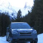 Our intrepid Subaru Forester