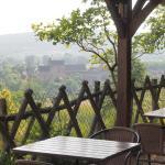 View of Sergeac from garden