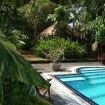 Photo of House of Lotus Yoga Retreat