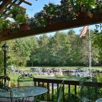 Treeland Harborview Restaurant