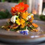 Market Garden Seasonal Vegetable Salad-Organic Vegetables and Lettuces from This Mornings Garden