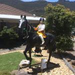 sikh boy on horse