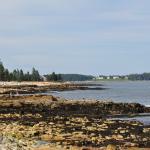 Manset Shoreline