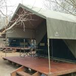 Wall tent - there are 3 at the Bush Camp