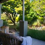 Oak Studio - Garden View