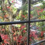 Photo de Camellia Inn Yukitsubaki