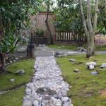 front garden - made by Ben!