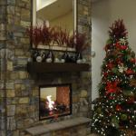 View of the Fireplace in the lobby