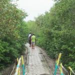 mudded road