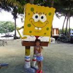Sponge Bob palm