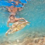 Тут живут огромные черепахи, если повезет и вода будет прозрачной - можно сделать красивые фотог