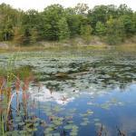 Frontenac Park -
