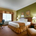 Relax in a spacious King Size Room. High Speed Wifi and Hot Breakfast included.
