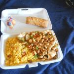 kung pao chix & frozen egg roll