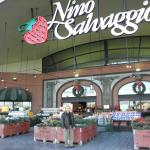 Nino Salvaggio International